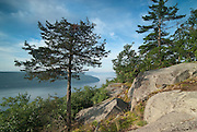Lake George, Adirondacks, NY.      Having climbed the hiker's trail, I am following human and animal trails along the top.  Direction:  North.  Looking South, down the misty length of Lake George, I bask in the morning warmth of this shelter of East facing rock , a little place I've spied off the trail and come down to.   I think of all the famous places I've gone to, eager to see inspiring vistas.  But here I am, captivated by a subtle beauty I didn't expect, didn't know I'd be drawn to.  How is it that we think we moving in a direction, but they find out we didn't know the way?   Maybe I didn't know where I was going after all.