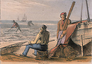 Shrimpers on the beach with their hand nets.  From 'Graphic Illustrations of Animals and Their Utility to Man',  London, c1850.