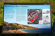 Wetland interpretive sign at Prisoner's Harbor, Santa Cruz Island, Channel Islands National Park, California USA