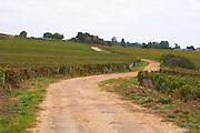 vineyard road clos st louis fixin cote de nuits burgundy france