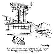 """Here's a list of possible names: Twin Oaks, Mfg. Co., Lakeside Tool & Dye Inc., Mountain Lake Tool & Dye, Oak Park Tool Mfg. Co., Mountainview Mfg. Inc..."""