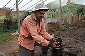 Costa Rica: Alianza Madre Tierra Fairtrade Coffee