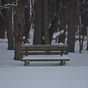 This bench sits at the end of a large field.  In warm weather it is used a lot.  On this day, someone had walked by without stopping.