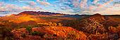 Flinders & Gammon Ranges