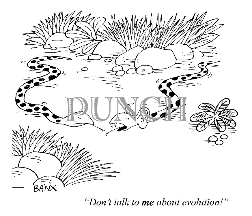 """""""Don't talk to ME about evolution!"""""""