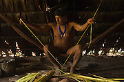 Huaorani man, Kempere Tega extracting fibres from the Chambira palm leaf. This will then be boiled and sun-dried before being twisted into sting for either hammocks, fishing nets or string bags.<br /> Bameno Community. Yasuni National Park.<br /> Amazon rainforest, ECUADOR.  South America<br /> This Indian tribe were basically uncontacted until 1956 when missionaries from the Summer Institute of Linguistics made contact with them. However there are still some groups from the tribe that remain uncontacted.  They are known as the Tagaeri & Taromenane. Traditionally these Indians were very hostile and killed many people who tried to enter into their territory. Their territory is in the Yasuni National Park which is now also being exploited for oil.