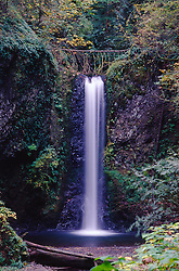 Waterfall in Autumn, Columbia River Gorge National Scenic Area, Oregon, US