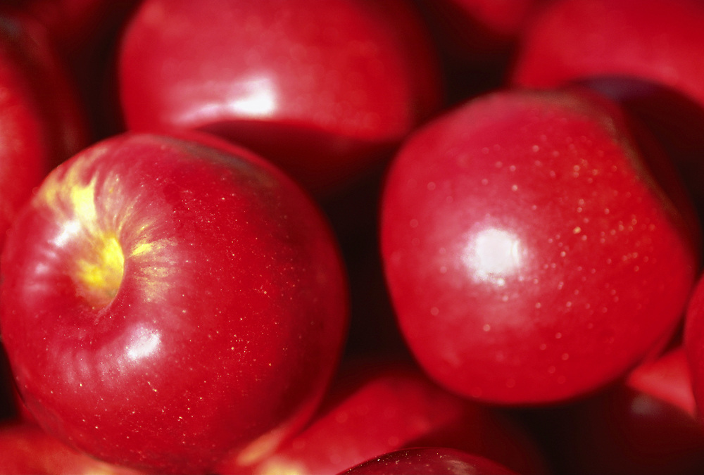 Close up selective focus photograph of a pile of Jonathan Apples