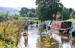 © Licensed to London News Pictures. 04/09/2021. Brecon, UK. A group of stand-up paddle boarders make their way down the Monmouthshire and Brecon Canal in South Wales on a beautiful Saturday afternoon as people enjoy the late Summer weather across the UK. Photo credit: Robert Melen/LNP