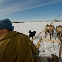 """Nomadic reindeer herder Fyodor """"Fedya"""" Vanutá drives his sled across the tundra while migrating with the last remaining Komi clan still to live on the land.  Notably, though, Fyodor is a Nenet, born to a different reindeer herding culture."""