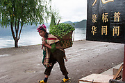 Minority woman carrying a heavy load at Lugu Lake, Yunnan, China. Lugu Lake is located in the North West Yunnan plateau in the centre of Ninglang Yi Autonomous County in the Peoples Republic of China.