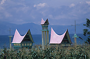 Batak cemeteries with gravestones in the form of traditional houses. Lake Toba is in the background..Batak Indigenous Christian people living on Samosir Island and nearby Lake Toba in Indonesia. There are some 6 million Christian Batak in Indonesia, the world's largest Muslim country of 237 million people, which has more Muslims than any other in the world. Though it has a long history of religious tolerance, a small extremist fringe of Muslims have been more vocal and violent towards Christians in recent years. ..Batak religion is found among the Batak societies around Lake Toba in north Sumatra. It is ethnically diverse, syncretic, liable to change, and linked with village organisations and the monotheistic Indonesian culture. Toba Batak houses are boat-shaped with intricately carved gables and upsweeping roof ridges, and Karo Batak houses rise up in tiers. Both are built on piles and are derived from an ancient Dong-Son model. The gable ends of traditional houses, Rumah Bolon or Jabu, are richly decorated with the cosmic serpent Naga Padoha carved in wood or in mosaic, lizards, double spirals, female breasts, and the head of the singa, a monster with protruding eyes that is part human, part water buffalo, and part crocodile or lizard. The layout of the village symbolises the Batak cosmos. They cultivate irrigated rice and vegetables. Irrigated rice cultivation can support a large population, and the Toba and the Karo live in densely clustered villages, which are limited to around ten homes to save farming land. The kinship system is based on marriage alliances linking lineages of patrilineal clans called marga. In the 1820's Islam came to the southern Angkola and Mandailing homelands, and in the 1850's and 1860's Christianity arrived in the Angkola and Toba region with Dutch missionaries and the German Rheinische Mission Gesellschaft. The first German missionary caused the Dutch to stop Batak communal sacrificial rituals and music, which was a major blow to the t