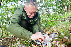 Patrick McGlinchey, founder and chief instructor of Backwoods Survival School, at Cambuslang. Backwoods' aim is to teach students not only how to survive, but to thrive in the natural environment - as our ancestors did and as many indigenous peoples still do. A pigeon being prepared for lunch..Pic ©2010 Michael Schofield. All Rights Reserved.
