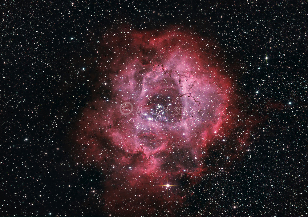 Rosette Nebula (Caldwell 49) and the open cluster NGC 2244 in constellation Monoceros.