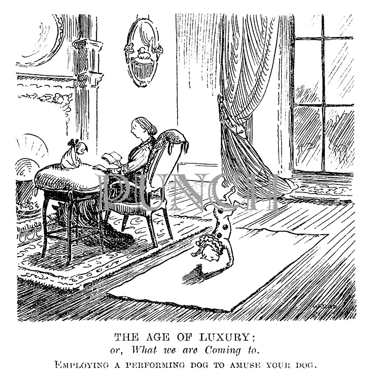The Age of Luxury; or, What we are Coming to. Employing a performing dog to amuse your dog.