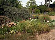 The Beth Chatto garden and nursery, Elmstead Market, Essex, England