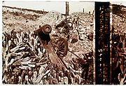 WW1 front trenches cannon