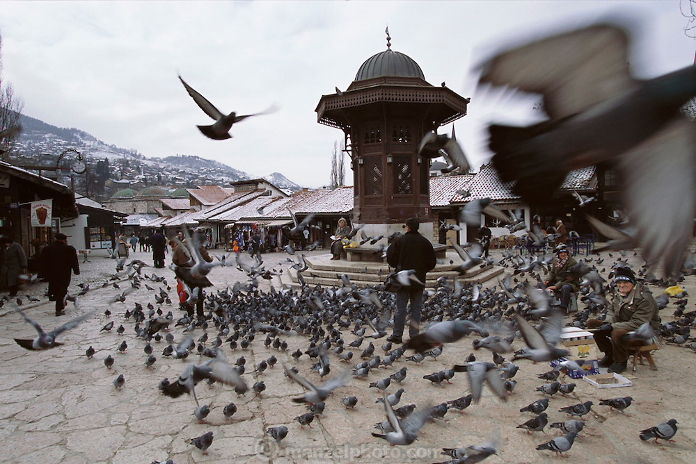 Feeding pigeons at a downtown park in old Sarajevo, Bosnia & Herzegovina.