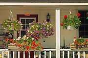 Flower pots on porch<br /> Rosseau<br /> Ontario<br /> Canada