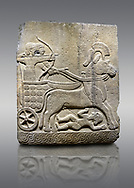 Picture & image of Hittite relief sculpted orthostat stone panel of Long Wall Basalt, Karkamıs, (Kargamıs), Carchemish (Karkemish), 900 - 700 B.C.  Anatolian Civilizations Museum, Ankara, Turkey<br /> <br /> Chariot. One of the two figures in the chariot holds the horse's headstall while the other throws arrows. There is a naked enemy with an arrow in his hip lying face down under the horse's feet. It is thought that this figure is depicted smaller than the other figures since it is an enemy soldier. The tower part of the orthostat is decorated with braiding motifs.<br /> <br /> On a gray background. .<br />  <br /> If you prefer to buy from our ALAMY STOCK LIBRARY page at https://www.alamy.com/portfolio/paul-williams-funkystock/hittite-art-antiquities.html  - Type  Karkamıs in LOWER SEARCH WITHIN GALLERY box. Refine search by adding background colour, place, museum etc.<br /> <br /> Visit our HITTITE PHOTO COLLECTIONS for more photos to download or buy as wall art prints https://funkystock.photoshelter.com/gallery-collection/The-Hittites-Art-Artefacts-Antiquities-Historic-Sites-Pictures-Images-of/C0000NUBSMhSc3Oo