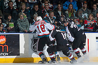 KELOWNA, CANADA - FEBRUARY 10: A fan reacts to Carsen Twarynski #18 of the Kelowna Rockets digging for the puck at the boards on February 10, 2017 at Prospera Place in Kelowna, British Columbia, Canada.  (Photo by Marissa Baecker/Shoot the Breeze)  *** Local Caption ***