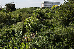 Sipson, UK. 5th June, 2018. A general view of Grow Heathrow. Grow Heathrow is a squatted off-grid eco-community garden founded in 2010 on a previously derelict site close to Heathrow airport to rally support against government plans for a third runway and it has since made a significant educational and spiritual contribution to life in the Heathrow villages, which remain threatened by Heathrow airport expansion.