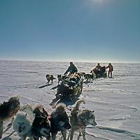 Dog teams from the 1989-1990 Trans-Antarctica Expedition navigate across the vast polar plateau near the South Pole.