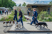 Security is tight as sniffer dogs patrol - The Chelsea Flower Show organised by the Royal Horticultural Society with M&G as its main sponsor for the final year.