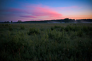 """Lush summer vegetation and dawn coloured clouds over floodplain with lite touch of fog in early summer morning,  nature park """"Dvietes paliene"""", Latvia Ⓒ Davis Ulands 