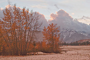 Cottonwoods, Fall Leaves, Heart K Ranch, Genesee Valley, Sierra Nevada Mountains, California Ranches, Cloudy Sunset, Dark Skies, Afterglow, Storm Clouds, Snow