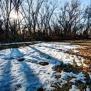 Field on the plains near Pratt, Kansas after snowfall.