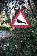 Road sign picture of a bird Rock nature reserve Gibraltar, British terroritory in southern Spain