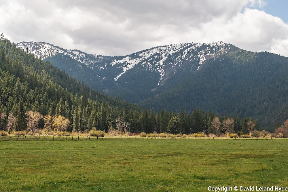 Grizzly Ridge Across Spring Pasture, Genesee Valley Ranch, California Mountains, Spring, Partly Cloudy, Green Pastures, Sierra Nevada Mountains, Shade Trees