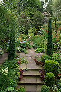 An aerial view of Diana Ross's London garden showing the different 'rooms' and an ecelctic mix of many plants including spires of Irish Yew (Taxus baccata fastigiata), Crocosmia 'Lucifer' and stone paving.  Clapham, London, UK