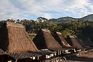 INDONESIA, Flores Archipelago, Ngada country, Bena traditional village in wood and bamboo