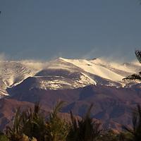 Africa, Morocco, Skoura. Atlas Mountains view from Skoura oasis.