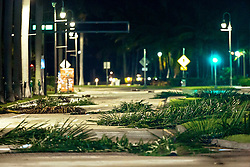October 7, 2016 - Florida, U.S. - Palm fronds litter Flagler Drive in downtown West Palm Beach before dawn Friday, October 7, 2016 after the passing of Hurricane Matthew. (Credit Image: © Lannis Waters/The Palm Beach Post via ZUMA Wire)
