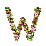 Capital Letter W Part of a set of letters, Numbers and symbols of the Alphabet made with flowers, branches and leaves on white background