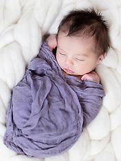Ava's Newborn Session