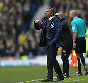 Brighton manager Chris Hughton during the Sky Bet Championship match between Brighton and Hove Albion and Norwich City at the American Express Community Stadium, Brighton and Hove, England on 3 April 2015.