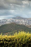 Mountain landscape in Gorges du Verdon, Verdon Natural Regional Park, France.