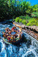 Kali River Rapids, Disney's Animal Kingdom, Walt Disney World, Orlando, Florida USA