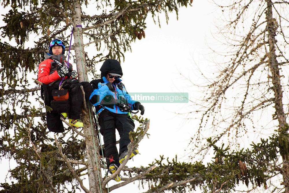 January 19, 2018 - Cortina D'Ampezzo, Dolimites, Italy - Ski coaches hanging off a tree at the Cortina d'Ampezzo FIS World Cup in Cortina d'Ampezzo, Italy on January 19, 2018. (Credit Image: © Rok Rakun/Pacific Press via ZUMA Wire)