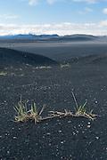 On the way to the Askja volcano, Iceland