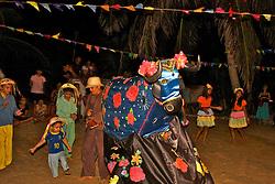 Bumba-meu-boi, boi-bumbá ou pavulagem é uma dança do folclore popular brasileiro, com personagens humanos e animais fantásticos, que gira em torno da morte e ressurreição de um boi. Hoje em dia é muito popular e conhecida.. FOTO: Lucas Uebel/Preview.com
