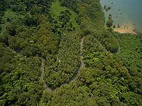 Bahia Santa Cruz, with mangrove forest<br />Coiba National Park<br />Panama