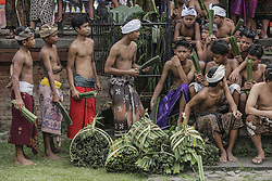 June 12, 2017 - Karangasem, Bali, Indonesia - Balinese armed with thorny pandanus leafs prepares before an annual sacred Mekare-kare ritual or known as Pandanus Fight in Tenganan Village, Karangasem, Bali, Indonesia on 12 June 2017. The fight is believed as their scarification for God Indra of the God of War in order to balance the human body and the universe. (Credit Image: © Johanes Christo/NurPhoto via ZUMA Press)
