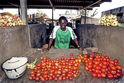 Man Selling Tomatoes At Market