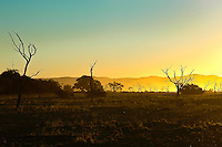 African sunset. Blue and gold sunset in Namibia, Africa. Exotic landscape for wall art. Landscape photography wall art. Fine art photography prints.