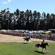 Competitors in action during the 50th Anniversary Glenorchy Race meeting. The races, which originally started in the 1920's, were resurrected in 1962 and have been run by local farmers and the rugby club on the first Saturday after New Years Day ever since. Glenorchy, Otago, New Zealand. 7th January 2012